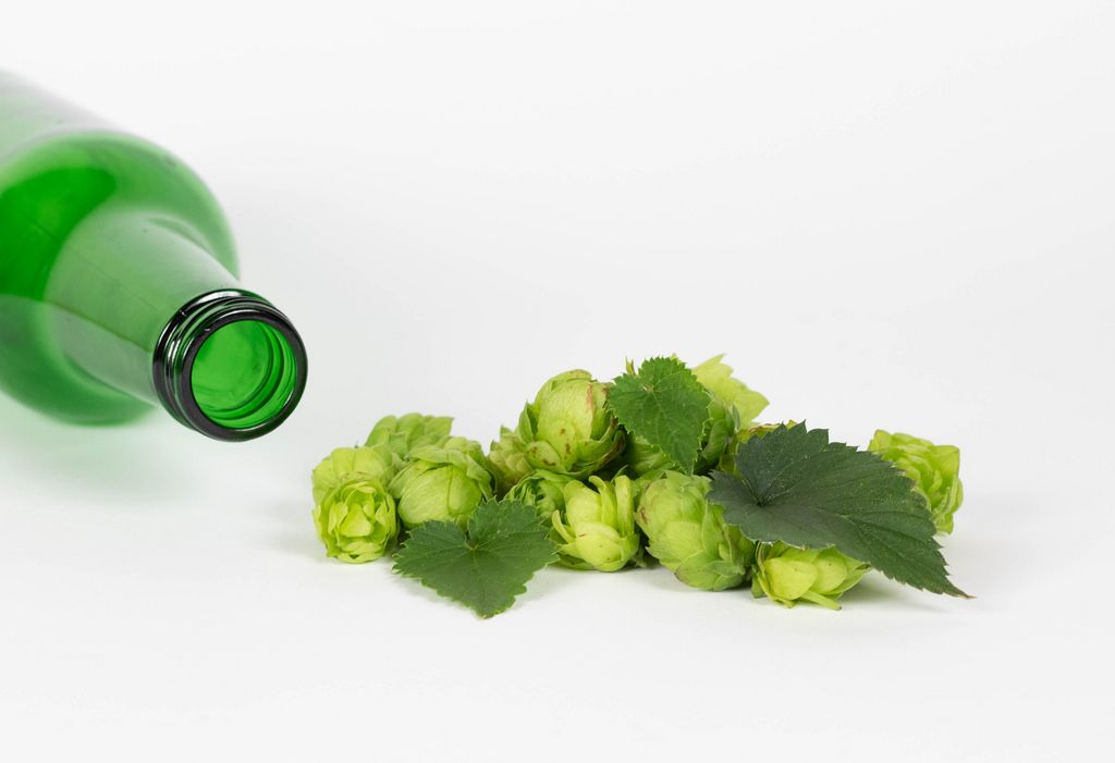 Hops with beer bottle