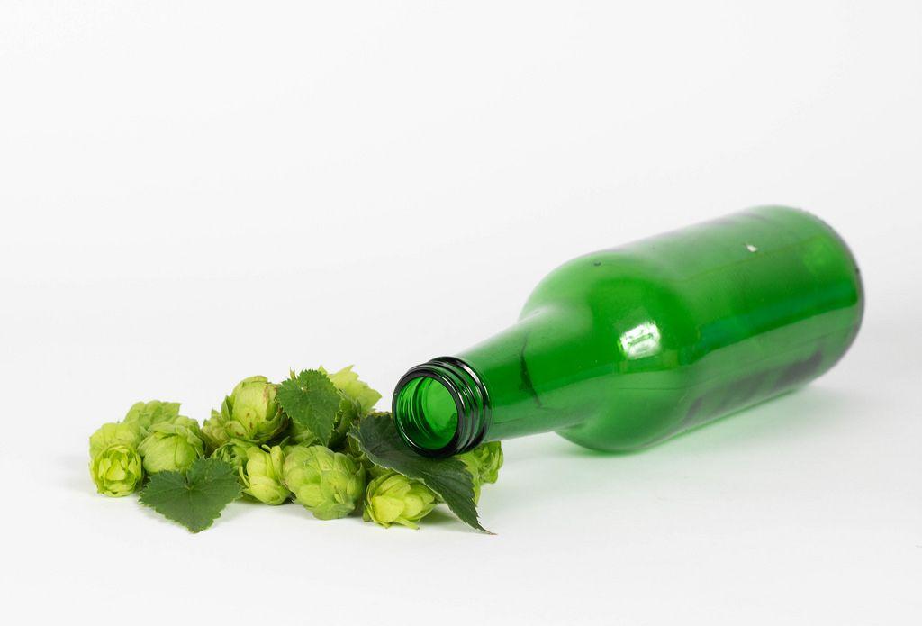 Hops with empty beer bottle