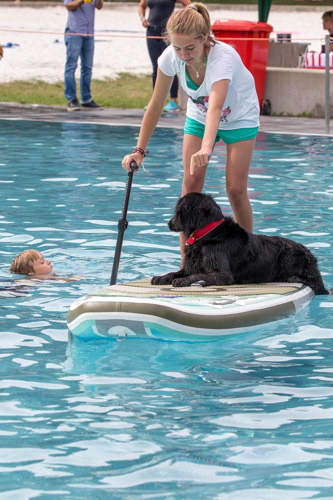 Hund auf SUP Board