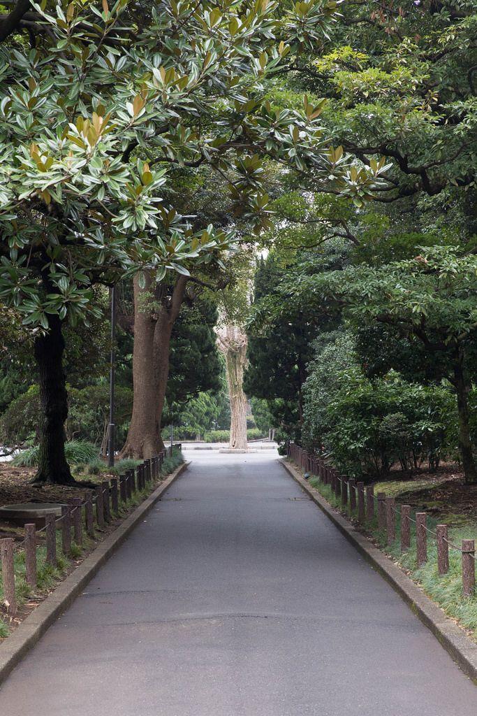Imperial Palace East Gardens Ninomaru in Chiyoda, Tokyo