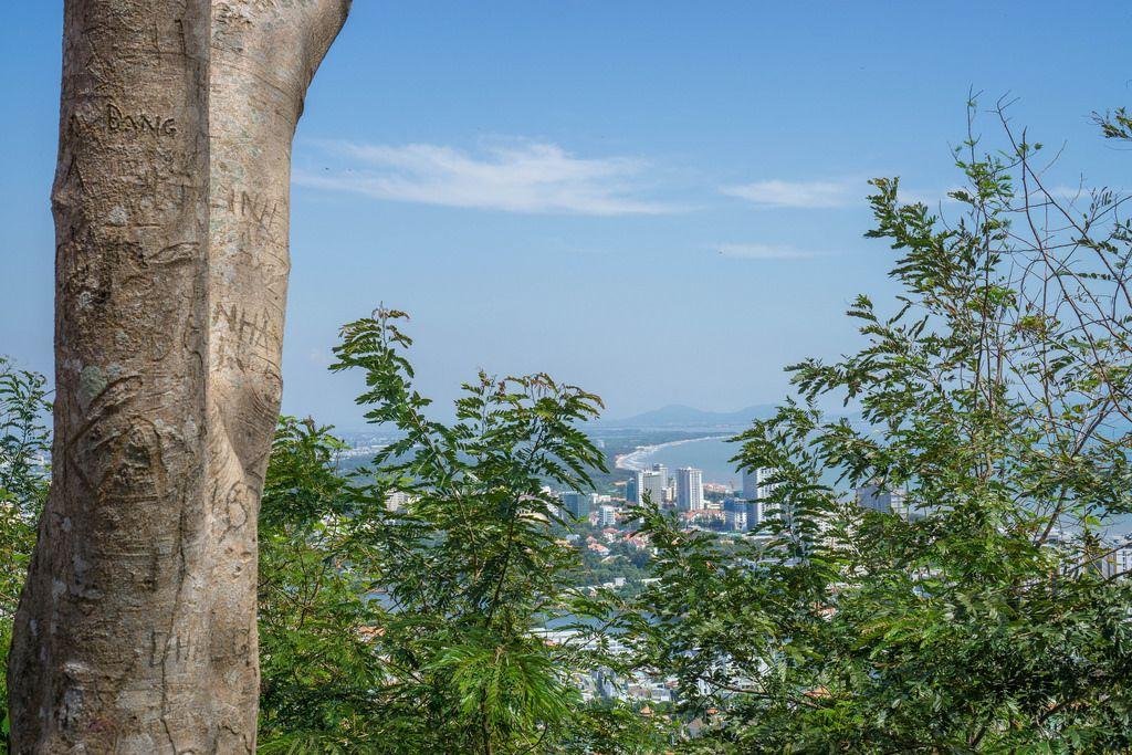 In die Rinde eines Baumes eingeritzte Botschaften, im Hintergrund der Blick auf die Küste der Stadt Vung Tau und die dahinterliegenden Berge