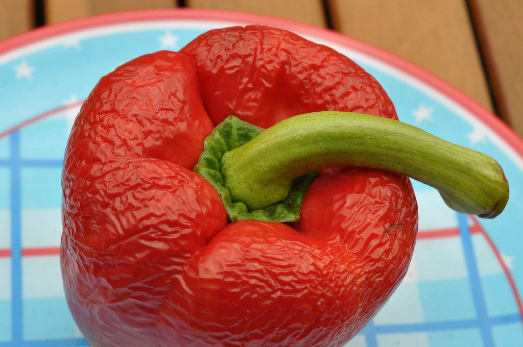 Inedible red pepper