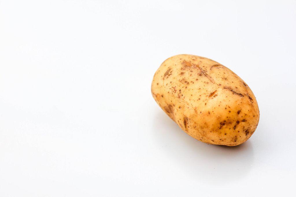 Kartoffel vor weißem Hintergrund