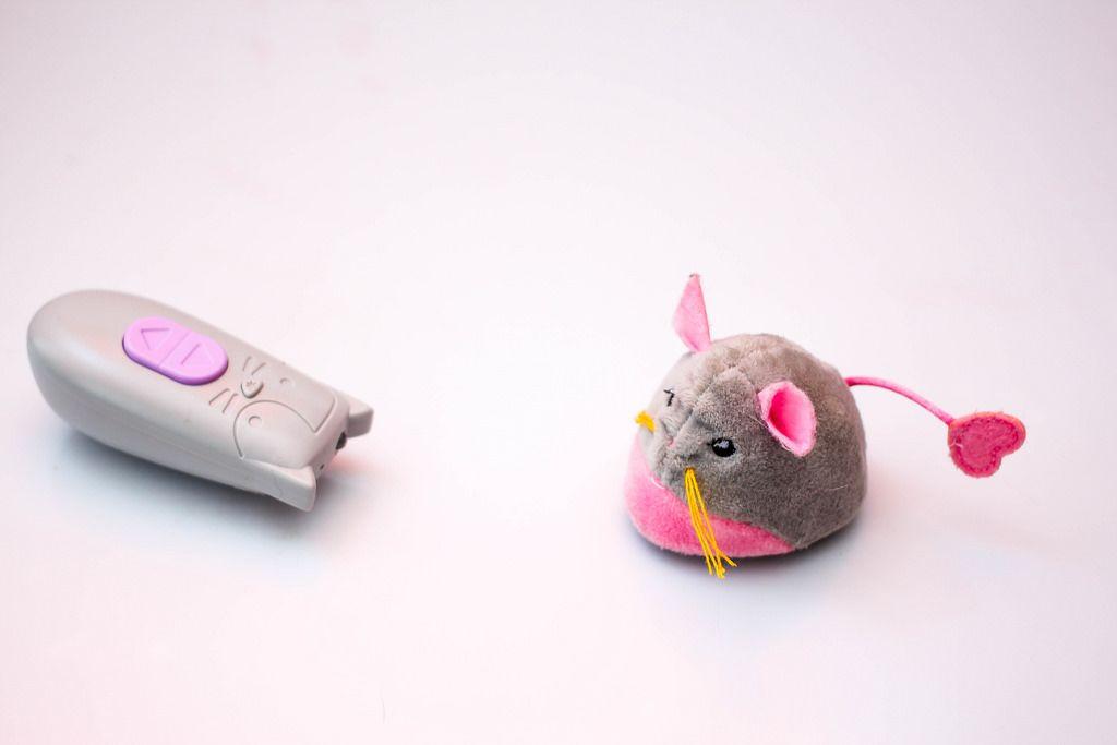 Katze und Maus Spielzeug mit Fernbedienung