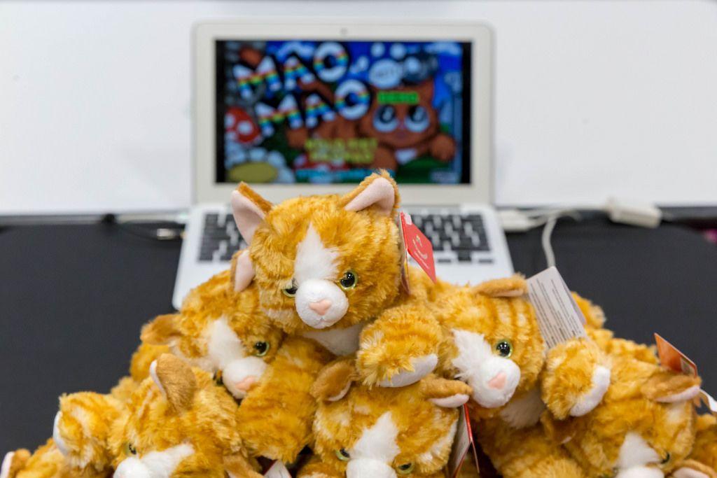 Katzen Stofftiere vor einem Laptop