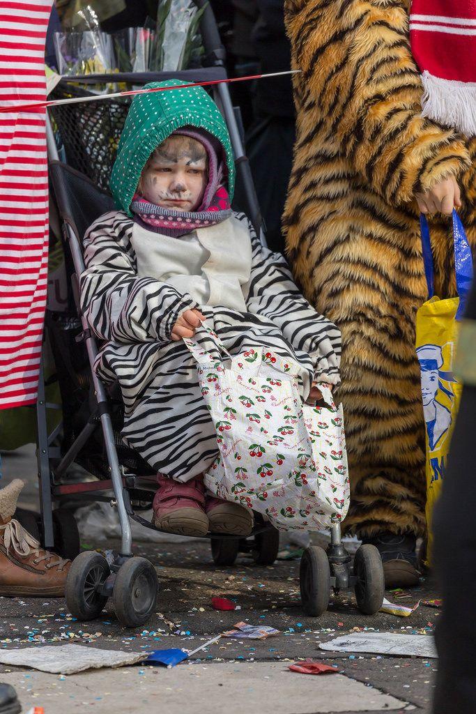 Kind im Kinderwagen mit Tigerstreifen und passender Gesichtsbemalung - Kölner Karneval 2018