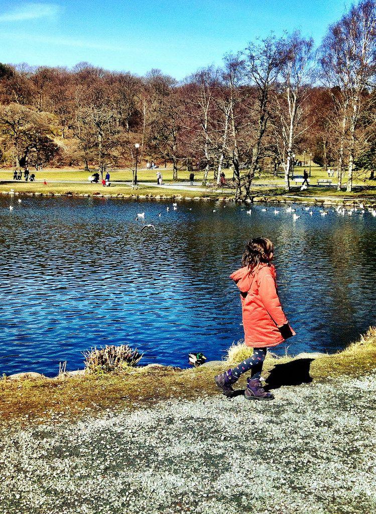 Kleines Mädchen spaziert entlang eines Teichs im Park