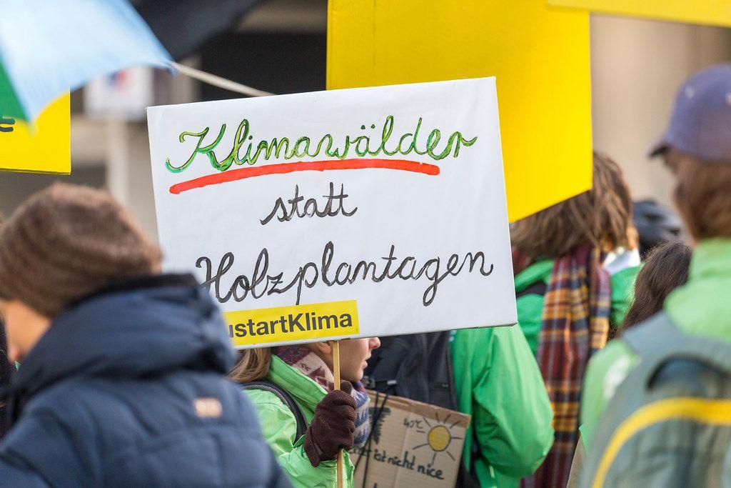 Klimawälder statt Holzplantagen als Aufschrift eines Demonstrationsplakates