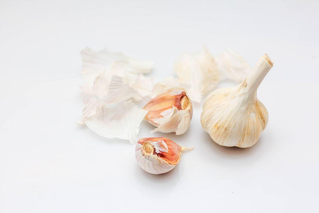Knoblauchzehen und ein ganzer Knoblauch vor weißem Hintergrund