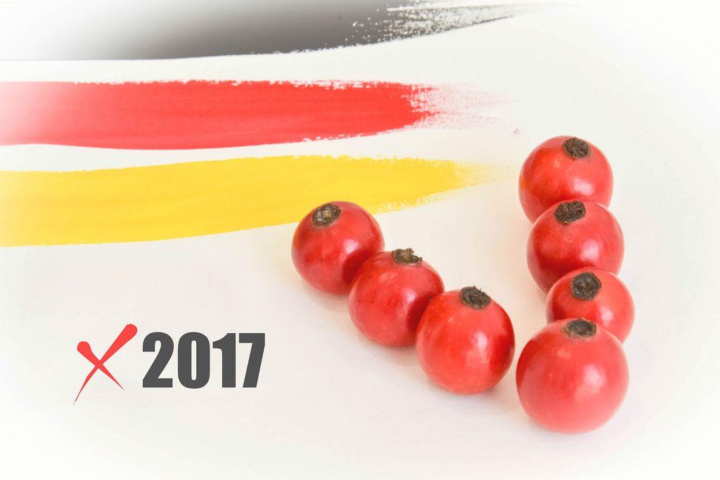 Kreuz machen bei der Bundestagswahl 2017