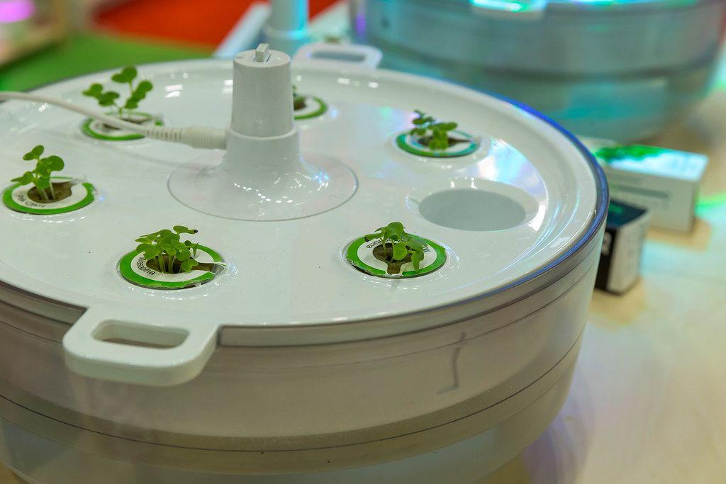 Küchengarten Plantui hydroponischer Indoor Smart Garden für Zuhause, mit Samenkapseln