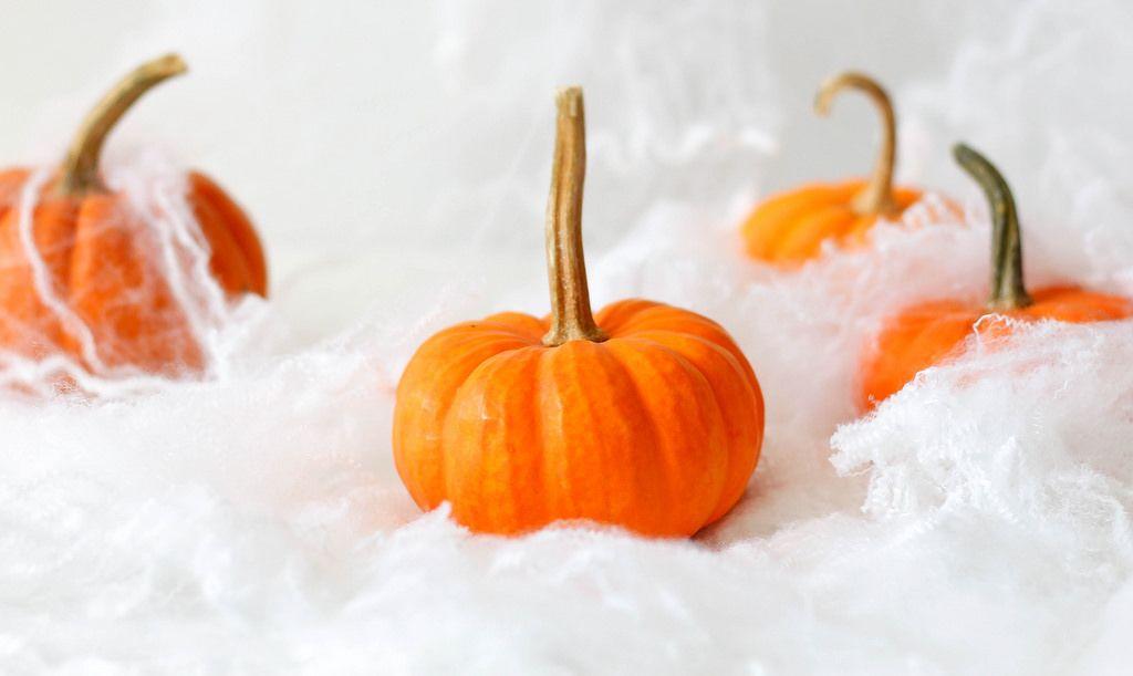 Kürbisse und weiße Spinnennetze zu Halloween