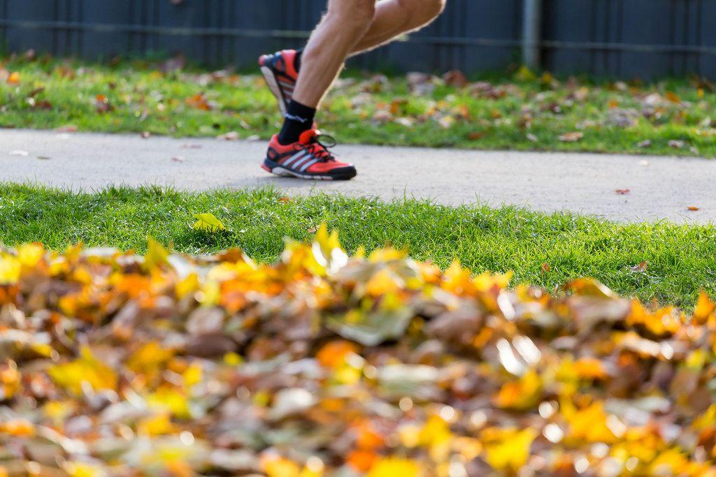 Laufen im Park mit Herbstlaub im Vordergrund