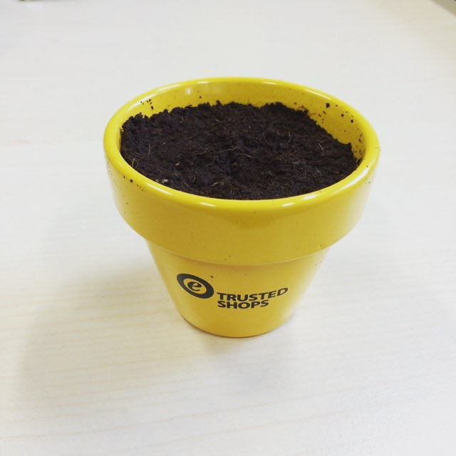 Let them grow. #trustedshops #growthacking #day0 #sonnenblume