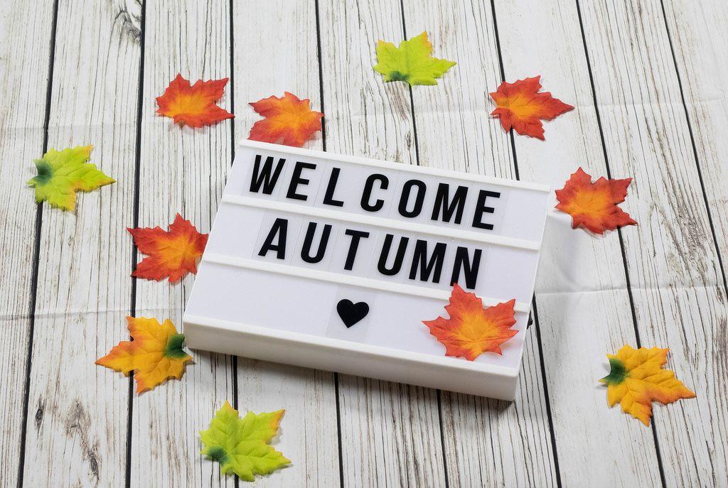 Lightbox Welcome Autumn Herbst bunte Blätter Holz Hintergrund