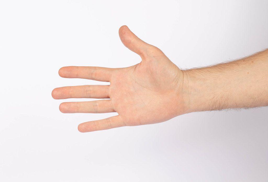 Man hand isolated on white (Flip 2019)