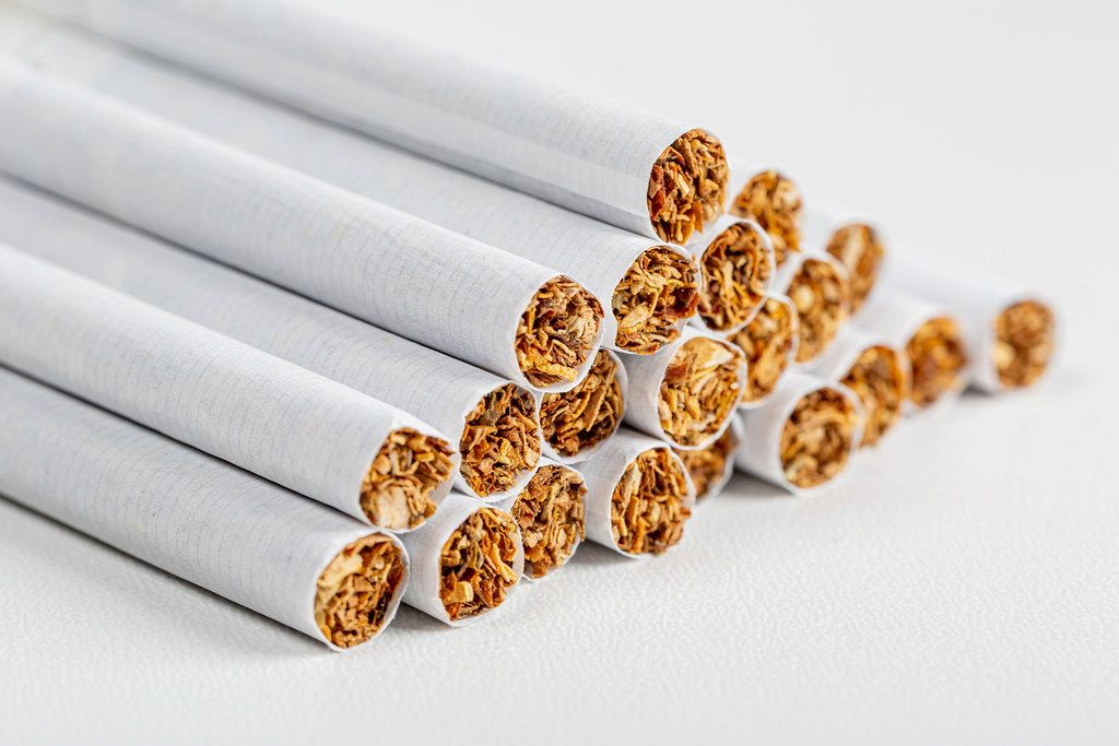 Many tobacco cigarettes on a white background