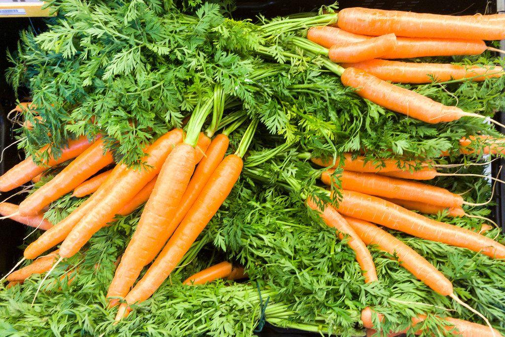 Mehrere Bündel Karotten