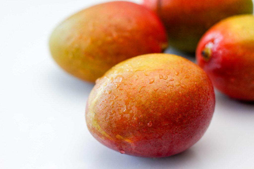 Mehrere Mangos vor weißem Hintergrund
