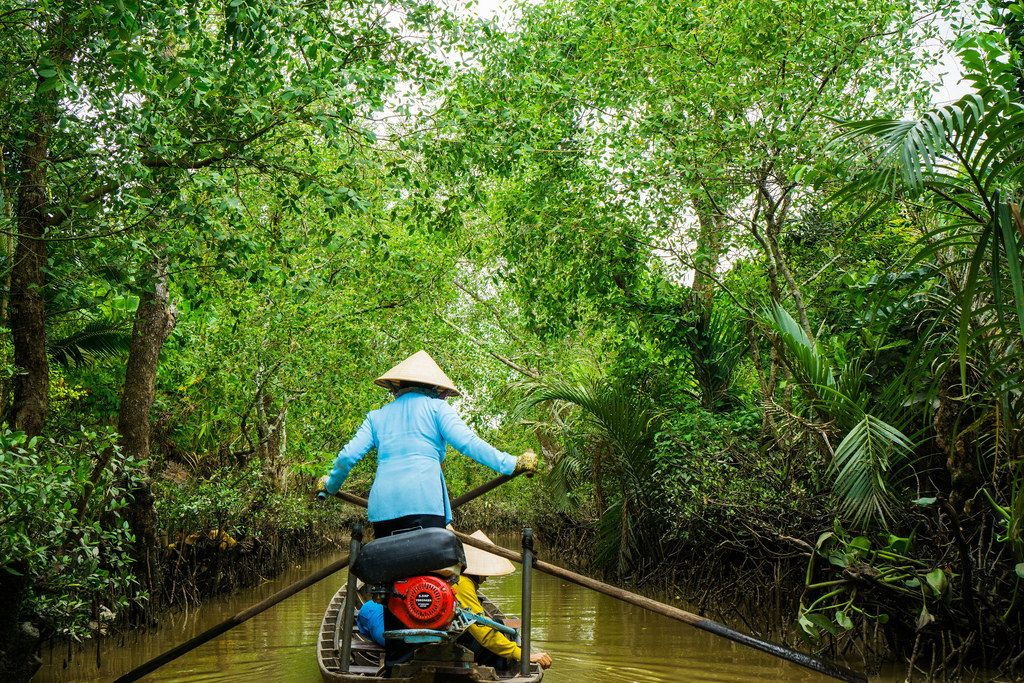 Mekong Delta Bootsfahrt - unglaubliche Natur
