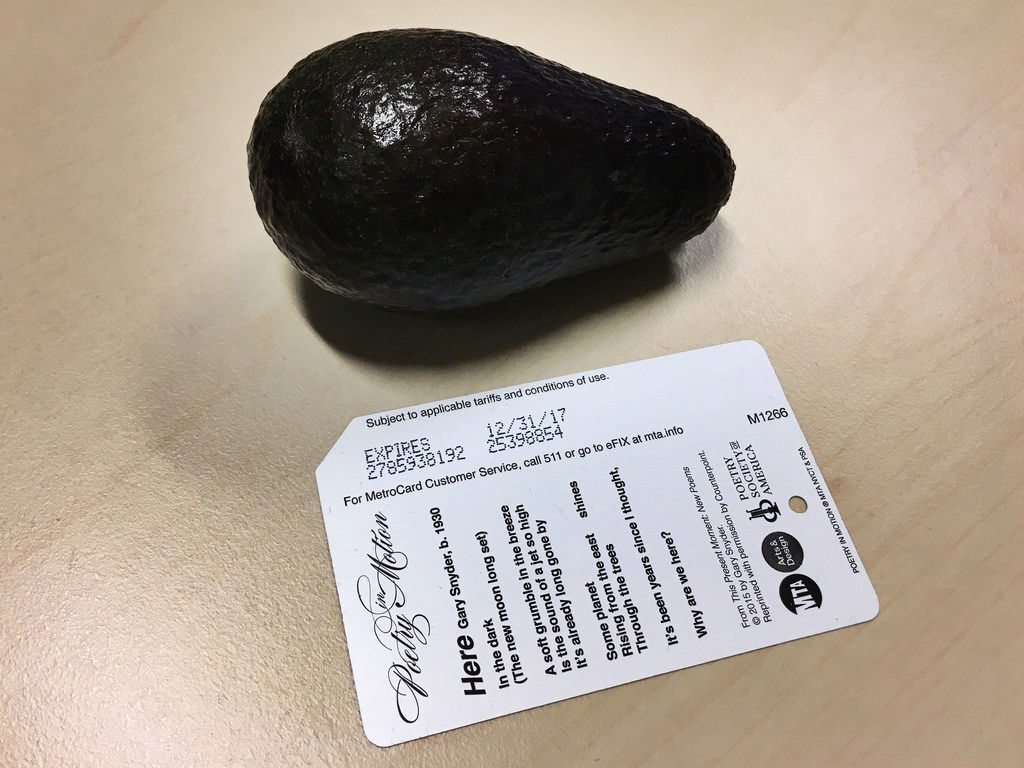 Mini-Avocado