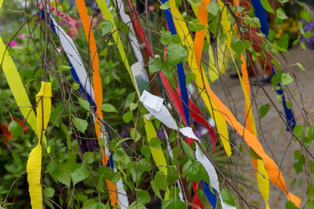 Mit bunten Bändern geschmückter Maibaum