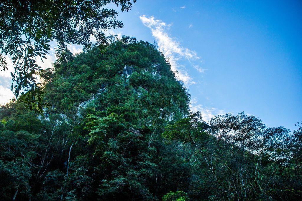 Mit dichtem Wald bewachsener, riesiger Felsen vor blauem Himmel