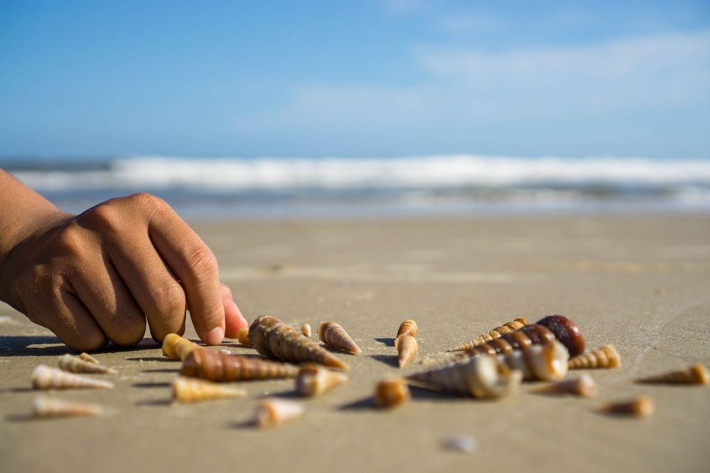Muscheln werden in einem Kreis am Strand in Vung Tau, Vietnam gelegt