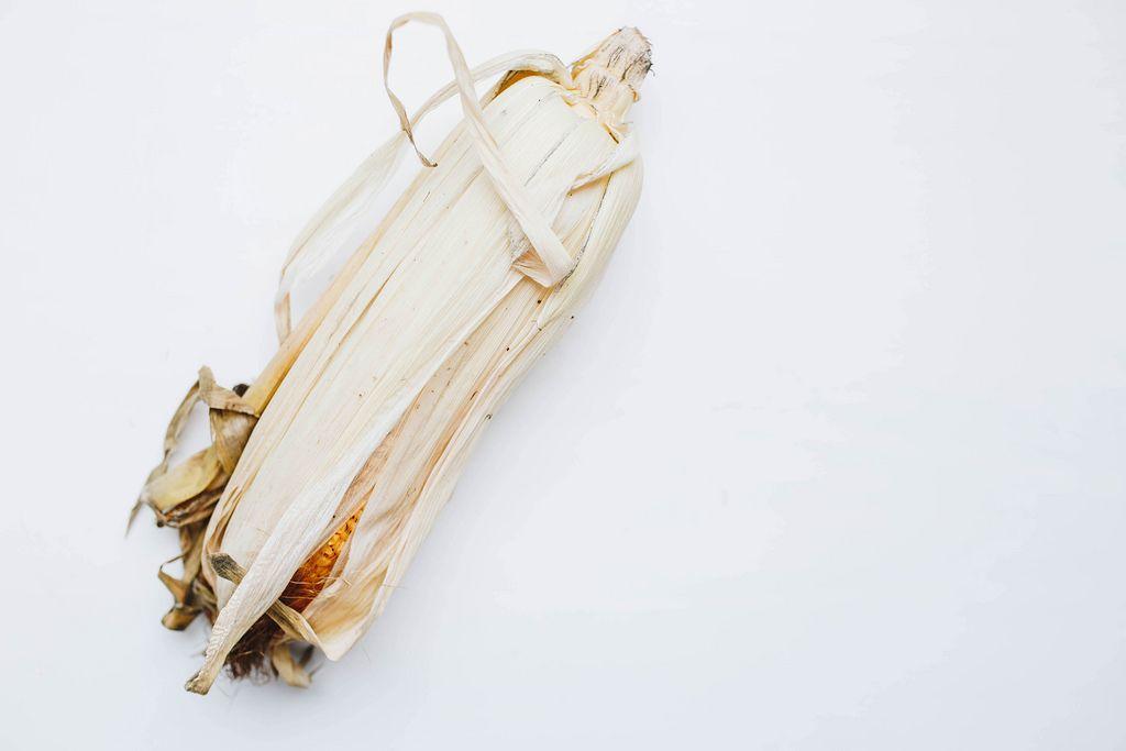 Nahaufnahme eines ungeschälten Maiskolben vor weißem Hintergrund