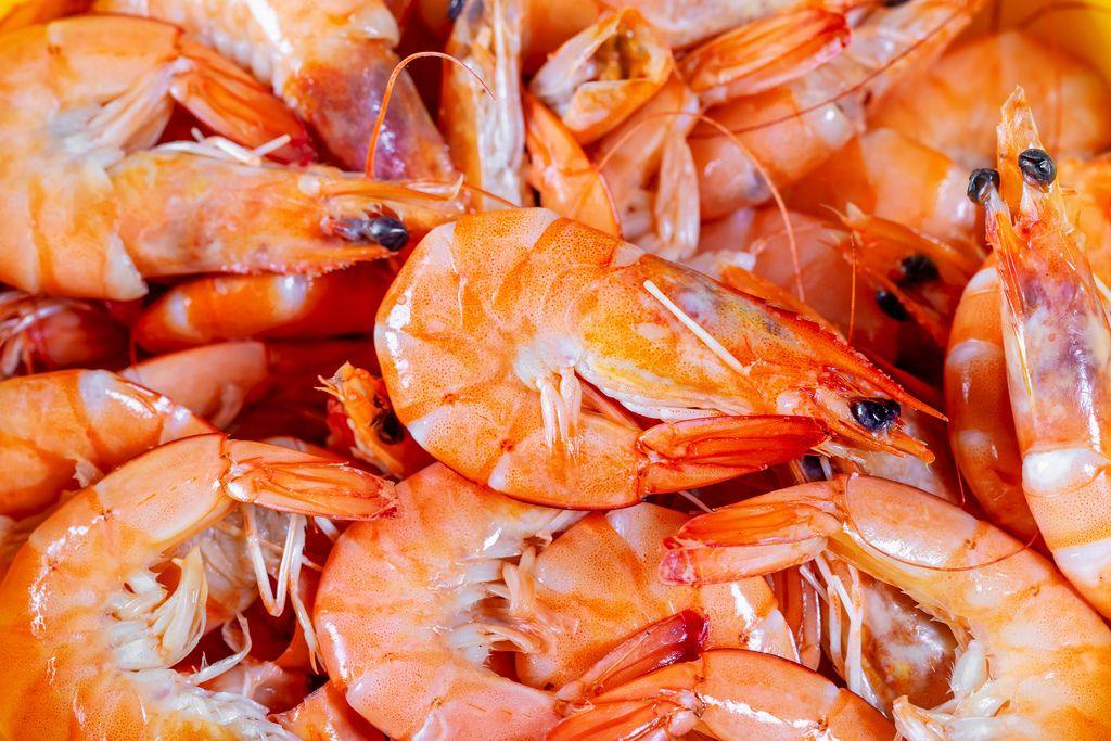 Nahaufnahme von Portion gekochter, ganzer und ungeschälter Garnelen