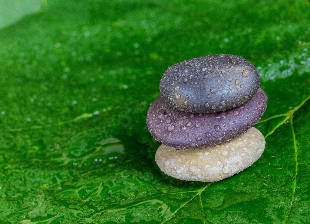 Nasse Steine auf grünem Blatt