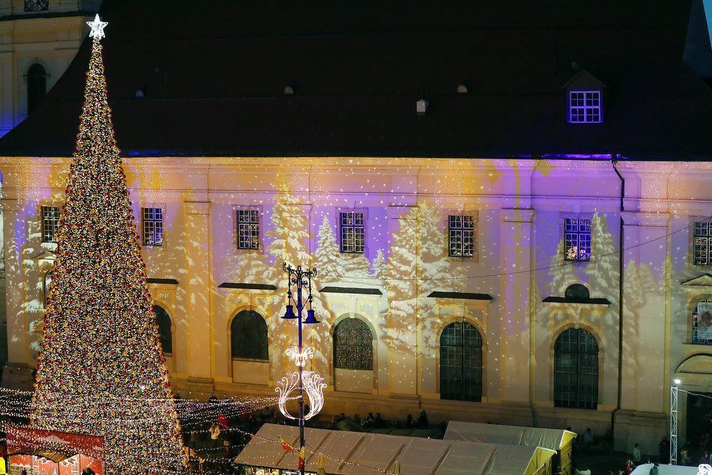 Night view of bug Christmas tree outdoors