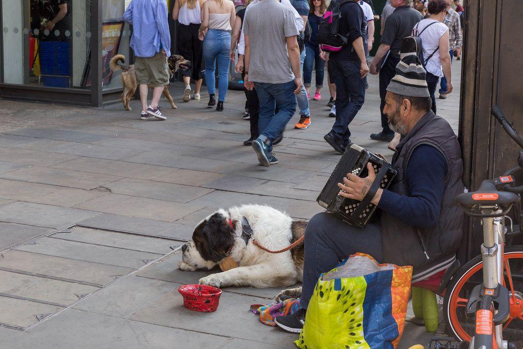 Obdachloser Mann mit Hund spielt Akkordeon