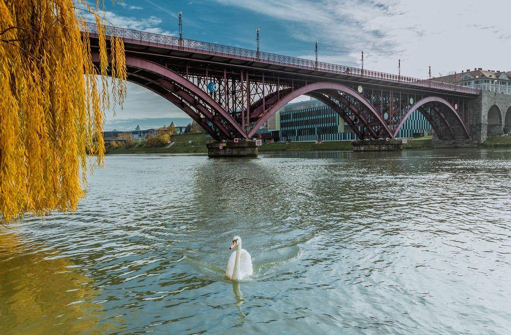 Old bridge in Maribor