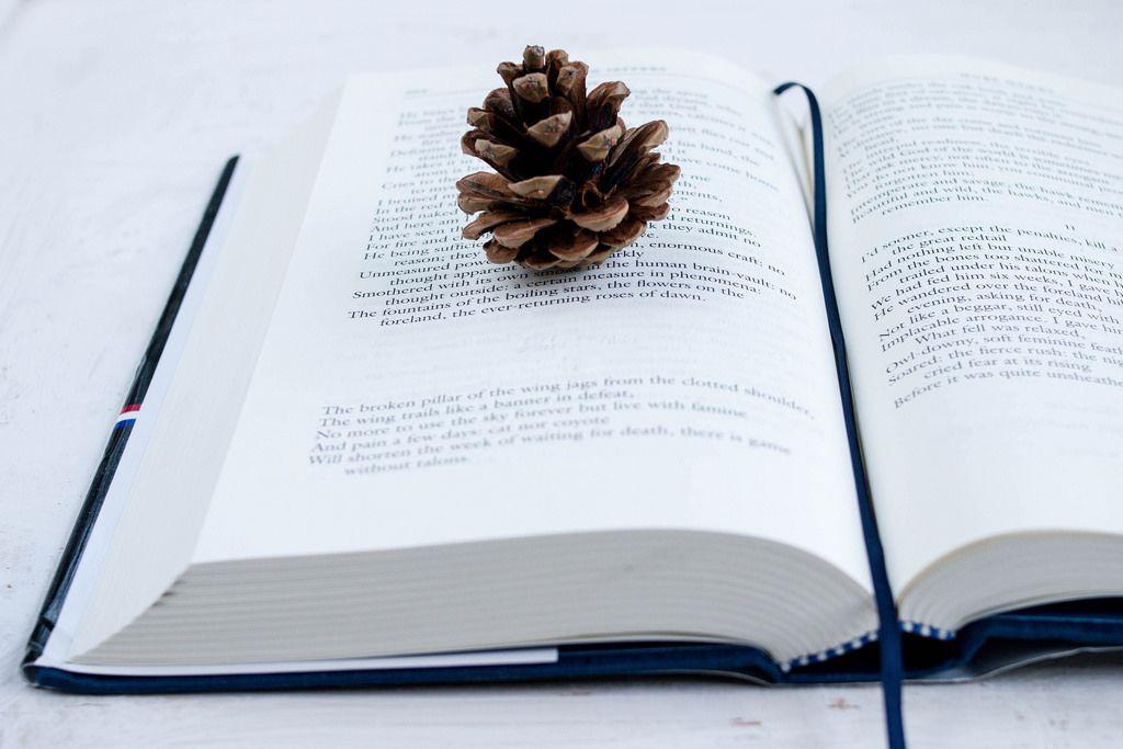 Open book  (dt. aufgeschlagenes Buch)