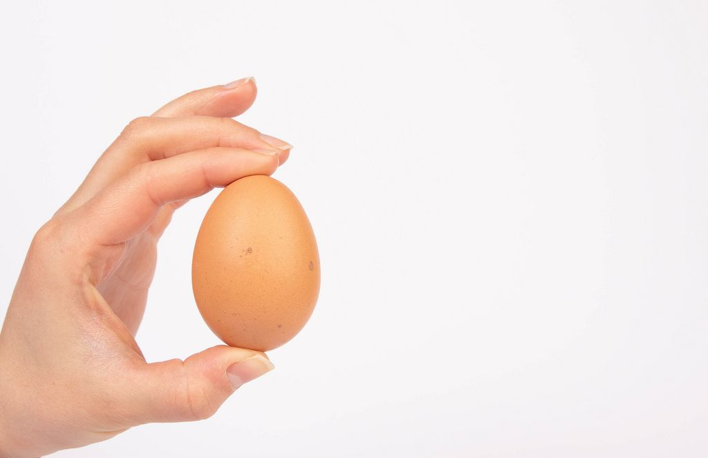 Organic egg in between fingers of a woman