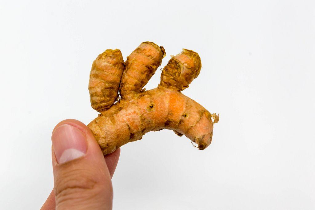 Organic turmeric root hold in hand