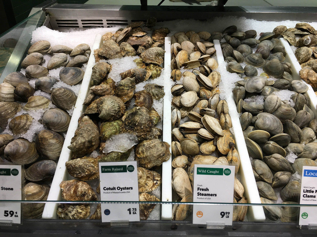 Oysters, Clams and Steamers