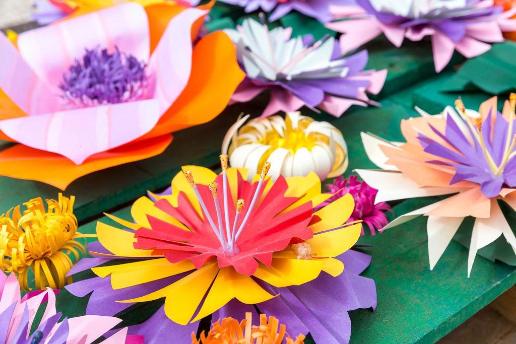 Paper Flowers in Funchal