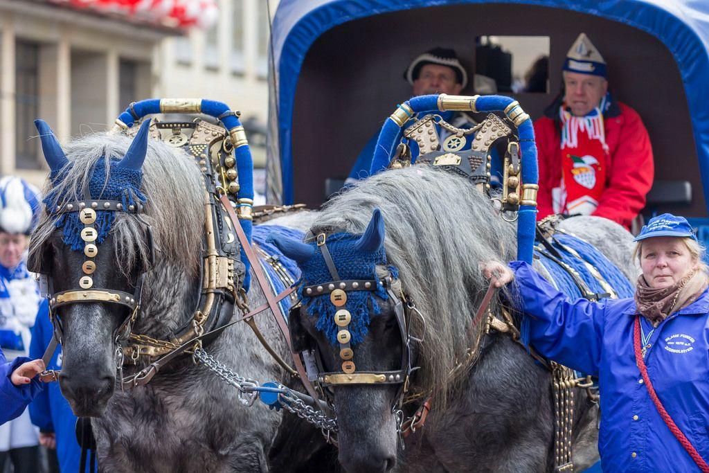 Pferdekutsche der Blauen Funken beim Rosenmontagszug - Kölner Karneval 2018