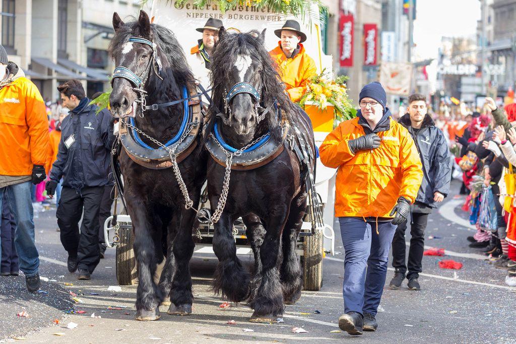 Pferdewagen der Nippser Bürgerwehr beim Rosenmontagszug - Kölner Karneval 2018