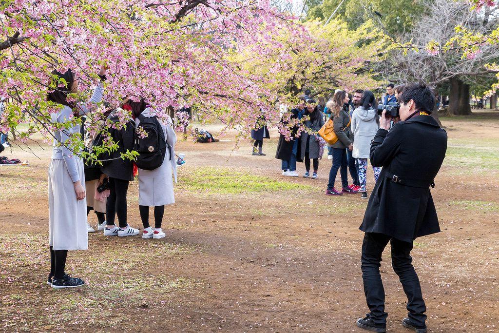 Photo Shooting im Yoyogi Park Tokio