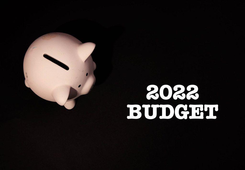 Piggy bank with 2022 budget text