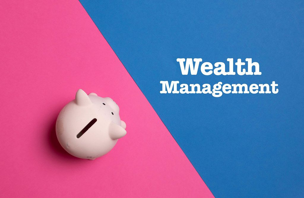 Piggy bank with Wealth Management text