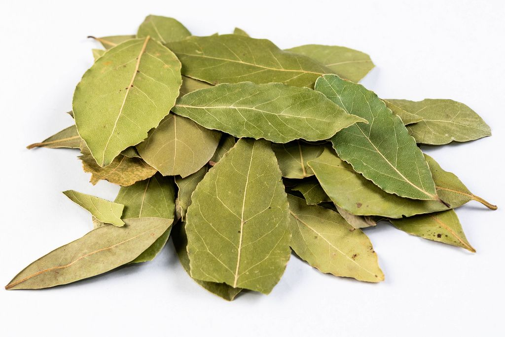 Pile of Dried Baf Leafs on the white background (Flip 2019)