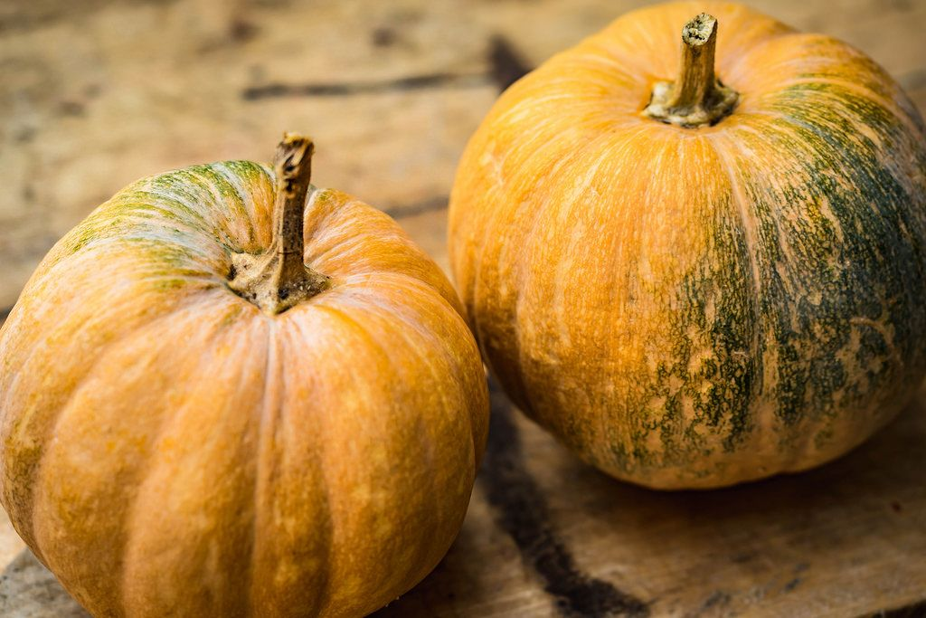 Pumpkins on the wooden board