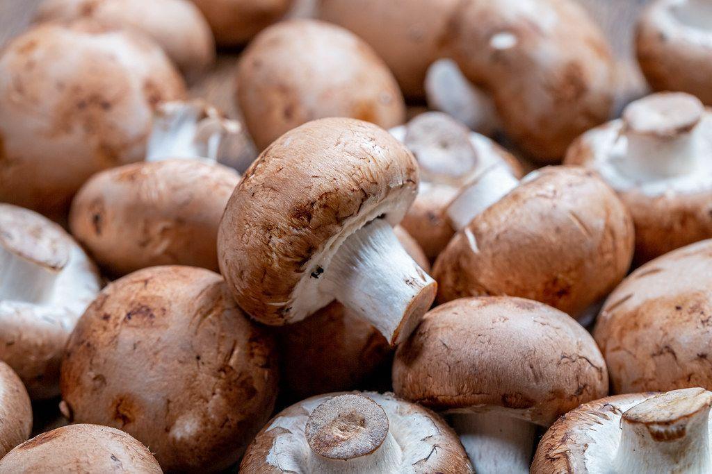 Raw royal mushrooms (Flip 2019)