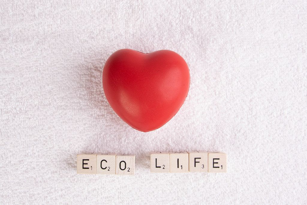 Red heart with eco life text