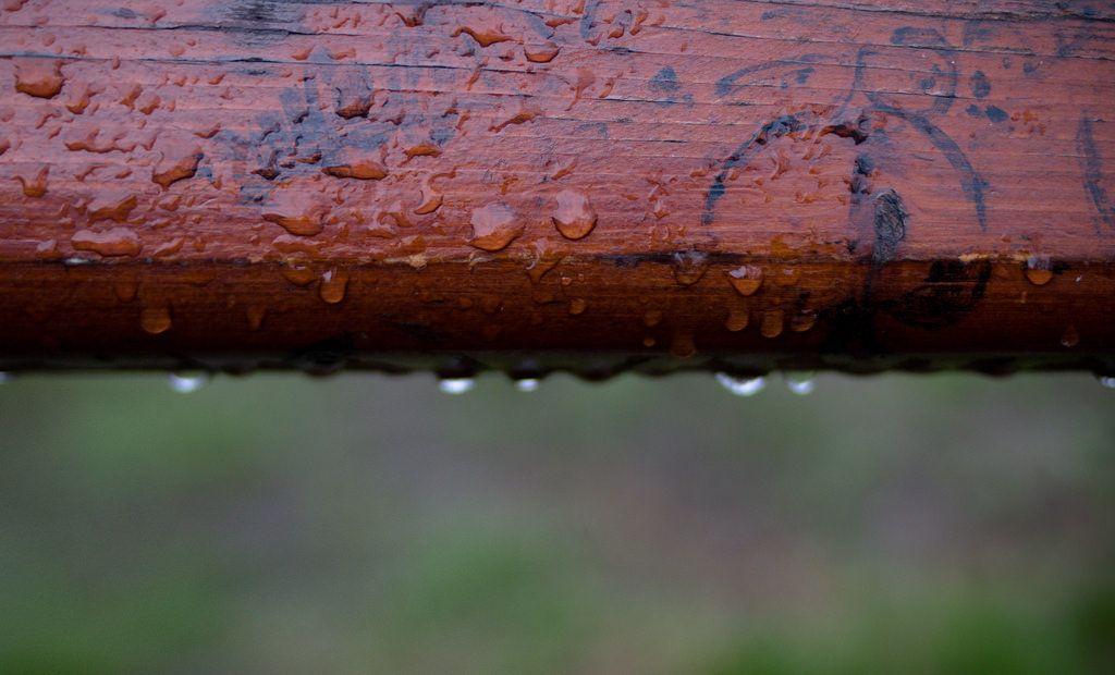 Regentropfen / Rain drops