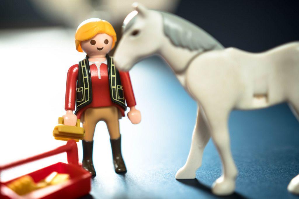 Reiter bereitet sich vor sein Pferd zu striegeln